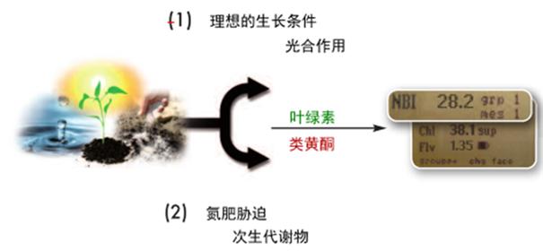 应用案例1.jpg